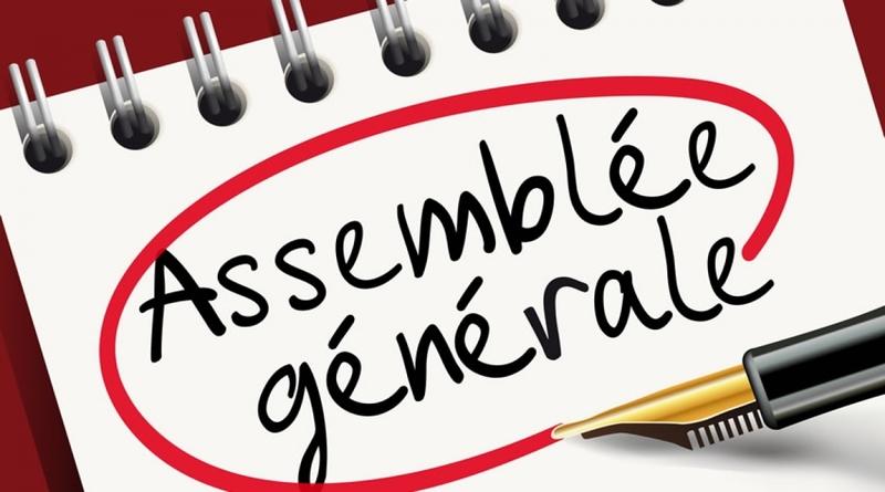 Organisation de l'assemblée générale ordinaire